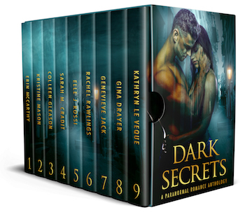 Dark Secrets: A Paranormal Romance Anthology Book Cover